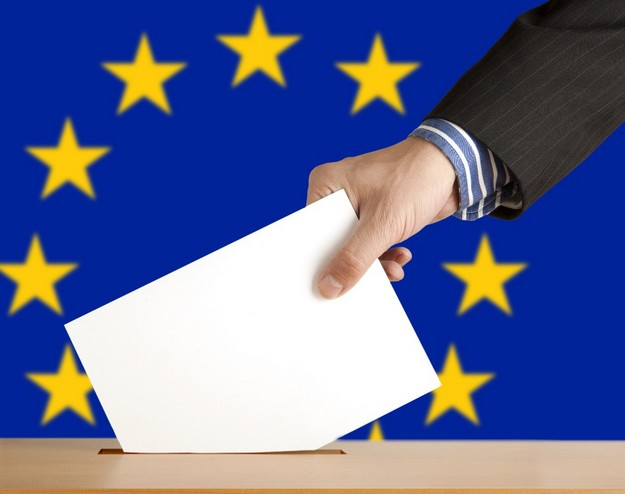 AD issues call for candidates for EP elections in May 2014