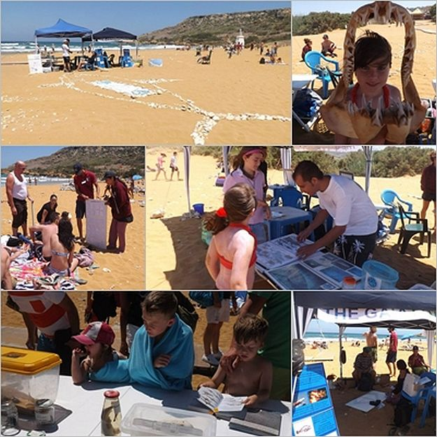 'Awareness Raising Day' at Ramla with Gaia and Sharklab
