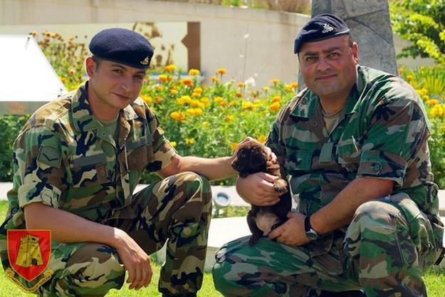 AFM personnel visit rescued puppy at Centru San Frangisk