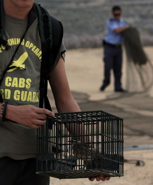 Police seize trapping nets and protected rare birds - CABS