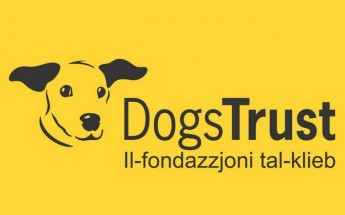 Dogs Trust launches 'The Puppy Plan' © in Malta and Gozo