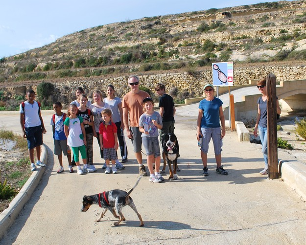 Gozo-Greyhounds enjoy a hike around Gharb & surrounding coastline