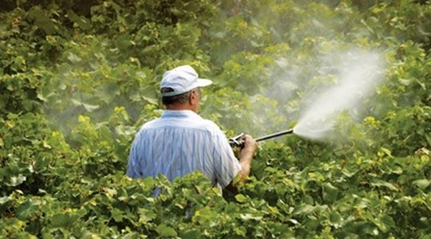 MCAST's Institute of Agribusiness evening course on the use of pesticides