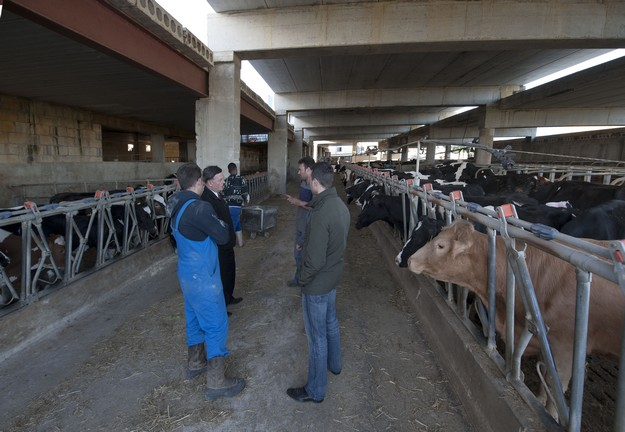 Dairy farms not making ends meet by just producing milk, says Dr Sant