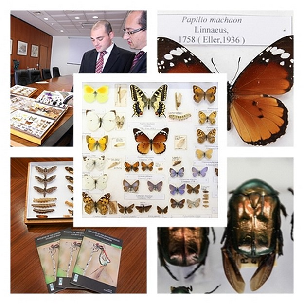 Bank of Valletta supports local entomologyin its latest ESM Bulletin