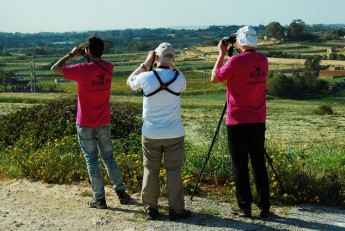 BirdLife appeal to help make 2014 last year of spring hunting in Malta