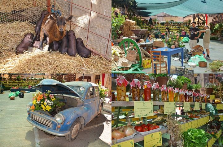 Wirja Agrarja – Agricultural Fair: 23rd edition taking place in Nadur