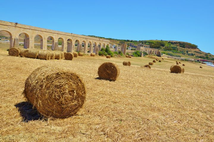 Funding under Malta's Rural Development Programme (RDP)