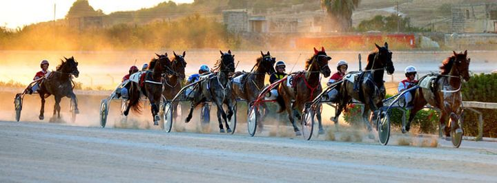 Trot finals for Bronze, Silver and Gold/Premier on Sunday at Xhajma Race