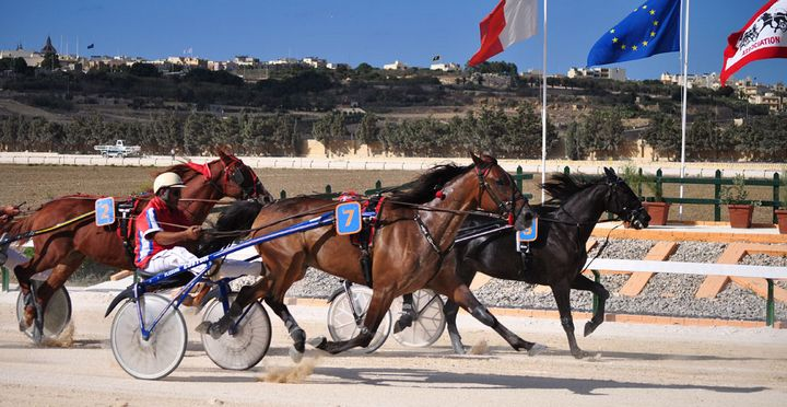 Gozo Horse Racing Association's first 'Autumn Heat' at the Xhajma track