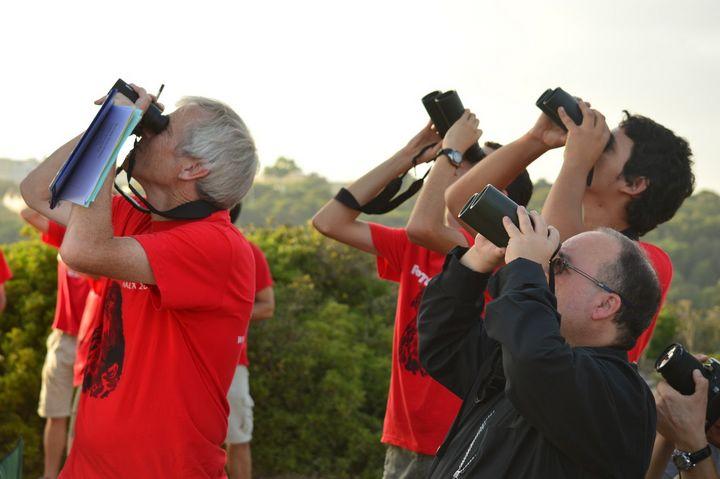 Bishop condemns violence on birdwatchers last weekend at Buskett