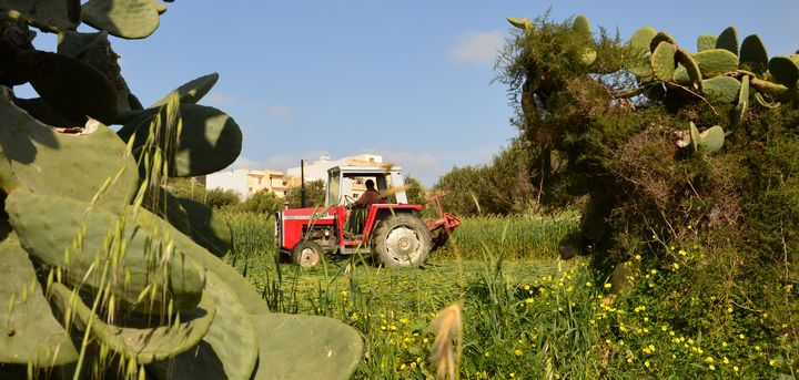 Factor income of the agricultural sector increased by 9.0% in 2015