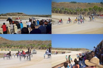 Large crowd enjoys Gozo Horse Racing Association Pre-Season meeting