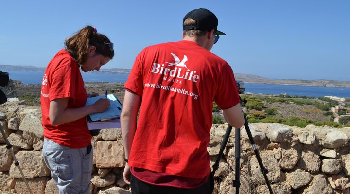 BirdLife Malta appeals to the public for support with Raptor Camp