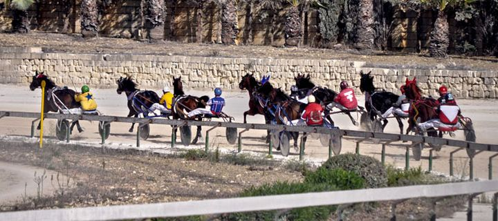 Final races of the 'Autumn Heats' on Sunday at the Xhajma track Gozo