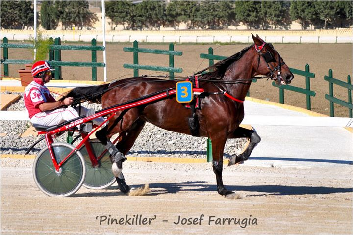 'Pinekiller' driven by Josef Farrugia is winner of Gozo Sprinter Master 2014