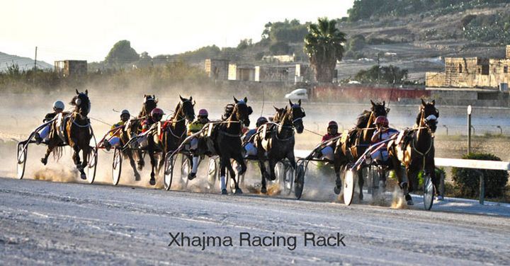 Gozo Horse Racing Association 'Gozo Sprinter Master 2014' this Sunday