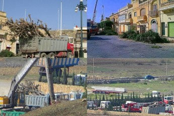 EU funds are being used to destroy trees in Gozo, says FAA