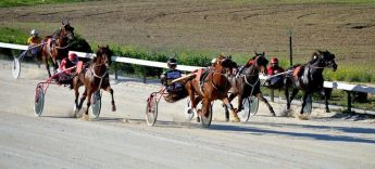 An exciting afternoon of racing in the Autumn Heats at Xhajma racetrack