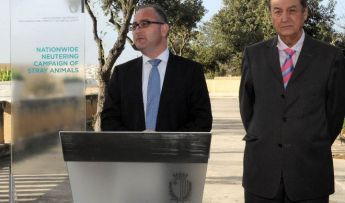 Discussions underway on neutering campaign for stray animals in Gozo