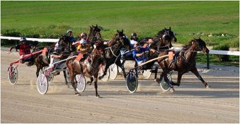 Republic Day Races for Trotters at the Xhajma Racing Track, Gozo