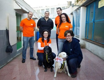 GO Cares Employee Fund supports animal sanctuaries in Malta