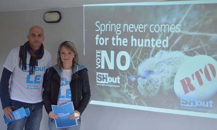Maltese hunters kill chance of 190,000 chicks each spring - SHout Report
