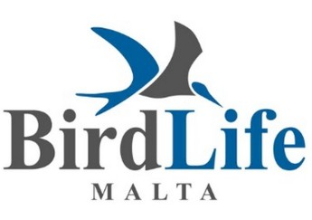 BirdLife Malta welcomes closure of spring hunting season