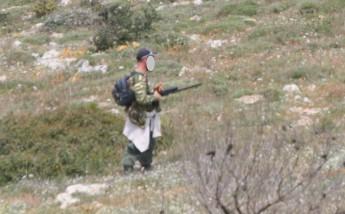 CABS: Kestrel shot at in Safi - Hunter filmed after curfew in Mizieb - Dead Cuckoo found