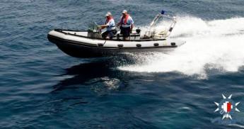 "Police urge caution after ""big fish"" spotted near Ghajn Tuffieha"