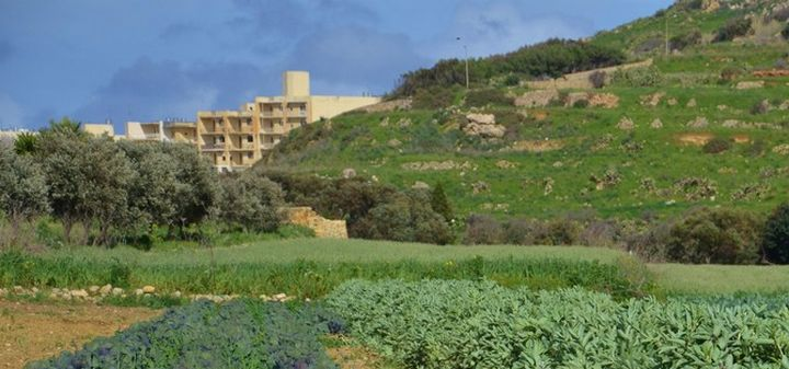 Gozo SPCA warning to pet owners over poison in Xaghra valley area