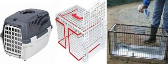Gozo SPCA appeal for return of borrowed cat baskets and cages