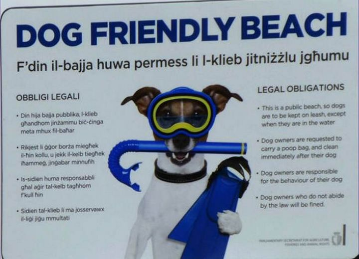 New signs marking locations of dog-friendly beaches in Gozo & Malta