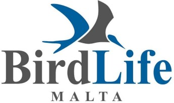Two BirdLife staff members attacked by trappers in Delimara