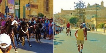 SPCA Malta welcomes Animal Welfare's position on Santa Marija  races