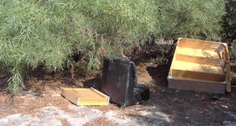 Natura 2000 sites under continuous attack by illegal dumping - NTM