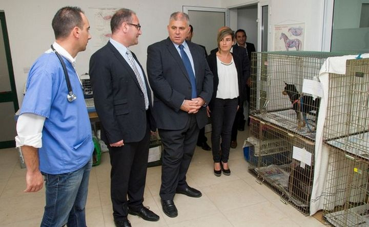 338 animals neutered during week long campaign in Gozo