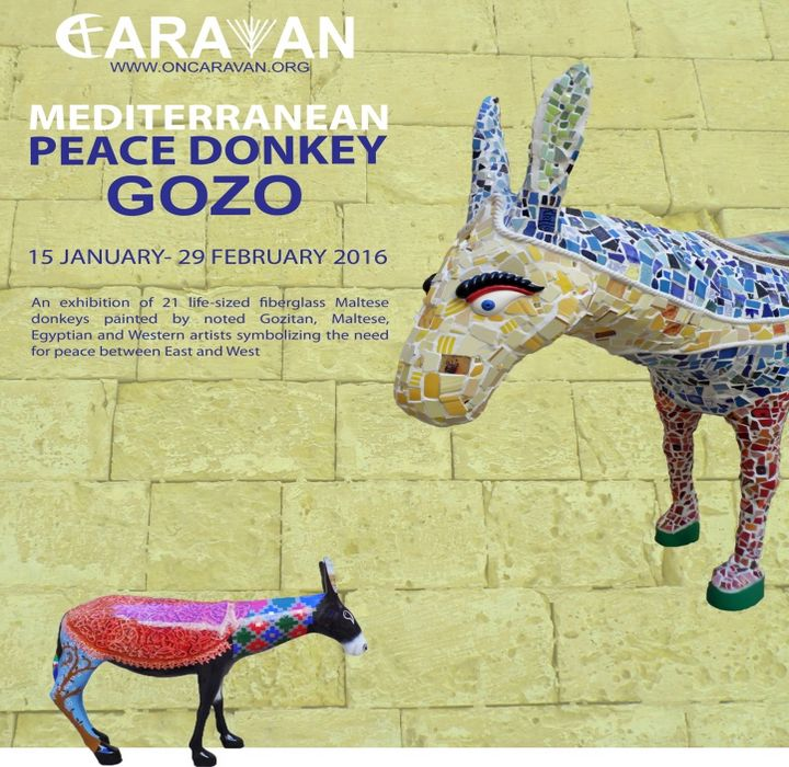 21 Mediterranean Peace Donkeys start a journey to Gozo this month