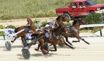 Gozo Horse Racing Association Trot Finals at Xhajma Racetrack