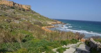 BirdLife Malta walk in Gozo from Mgarr to San Blas this Saturday