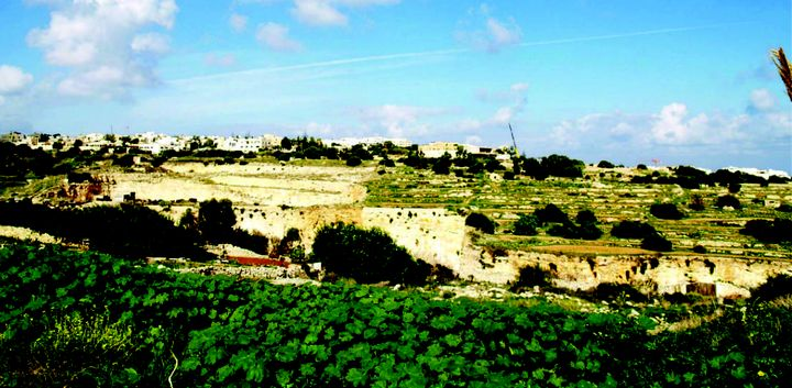 Wied Ghomor is a scheduled valley and should be protected - NTM