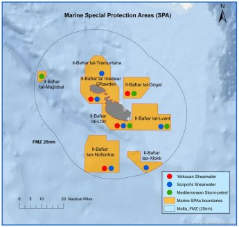 Malta's first marine Special Protection Areas announced