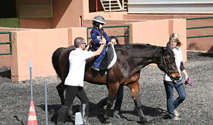 Crowdfunding campaign for therapeutic Horseback Riding in Gozo