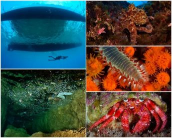 Extensive marine research in Malta concludes after 140 days at sea