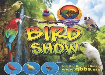 The Gozo Bird Breeders Society Annual Bird Show next weekend