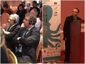 Gozo Business Chamber participates in Annual Forum of INSULEUR