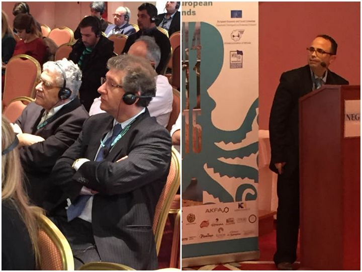 Gozo Business Chamber participates in the Annual Forum of INSULEUR