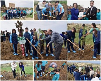Gozitan school children 'Plant a Tree for Peace' on Ghammar Hill