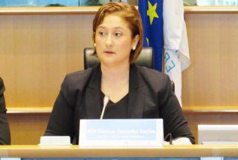 Copyright reform should not close doors to SMEs - Comodini Cachia