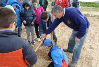 Gozo Scouts 100th anniversary event of tree planting for Arbor day